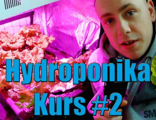 Hydroponika Kurs #2 niezbędne elementy