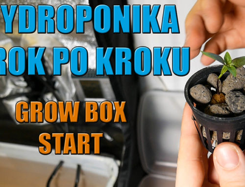 Hydroponika Krok Po Kroku – GROW BOX Start