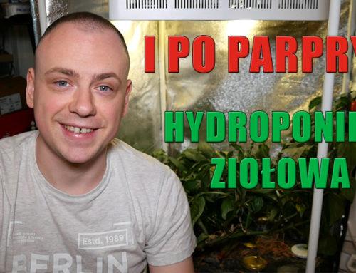 Hydroponika ziołowa domowy nawóz Część 2
